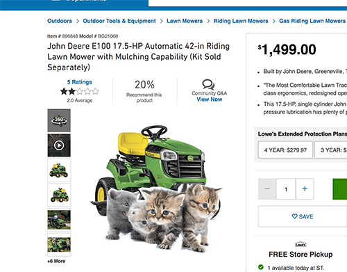 kittens in ecommerce