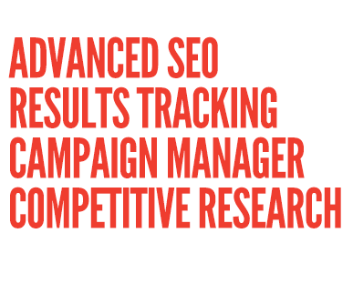 Complete Managed SEO strategy